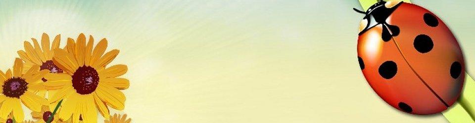 banner-summertime